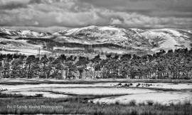 www.scottishphotographer.com