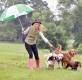 © Sandy young Photography 07970 268944 29th Scottish Game Fair T NEVER RAINS BUT PAWSÉ. Weather experts predict a dry weekend so come rain or shine, the forecast looks good for the 29th annual Scottish Game Fair, launching tomorrow (Friday 30 June). As preparations get underway for some 470 traders, the highest number yet to attend the Fair, local Carrie Anderson, aged 25 from Stirling helps launch the inaugural Four Nations International Gundog competition held this Saturday in the grounds of Scone Palace. PICTURED Carrie Anderson, aged 25 from Stirling with dogs L-R Peat, aged 2 English Springer , Cider, labrador aged 2, Corrie, aged 3 golden retriever and Fetlar, working cocker spaniel aged 3. E: sandyyoungphotography@gmail.com W: www.scottishphotographer.com